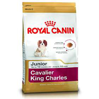 royalcaninkingcharles