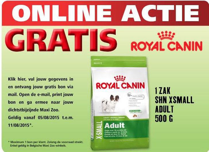 royalcaninmaxizoo0508