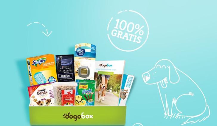 Dogobox