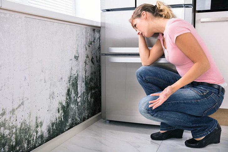 houseprotec gratis vochtdiagnose premie