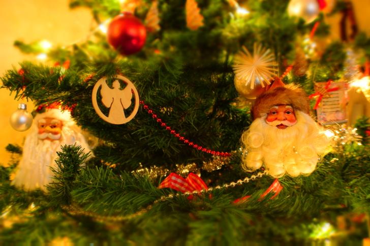 gratis kerstboomophaling